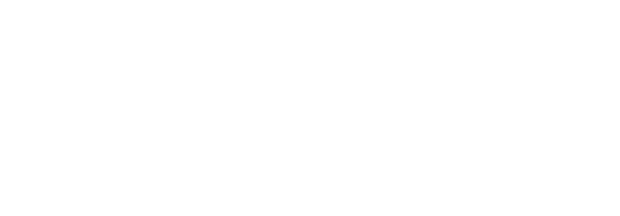 WordCamp Seattle 2015: Experienced Edition